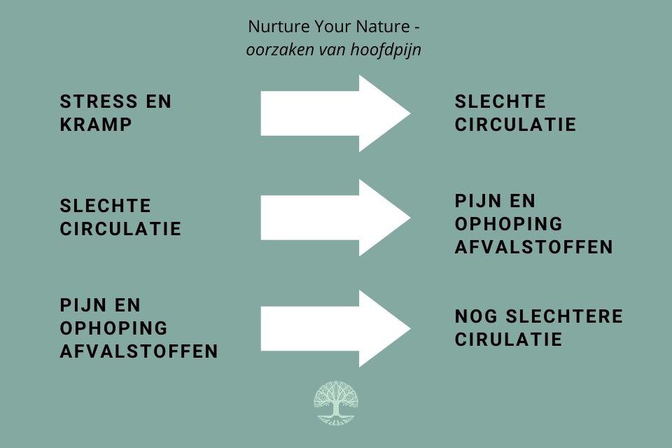 oorzaken van hoofdpijn - acupunctuur Purmerend hoorn en Amsterdam noord